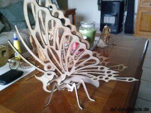 Schmetterling 3D Modell (2)