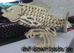 Angelfisch 3D