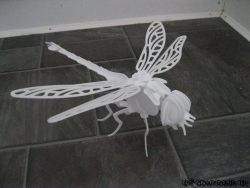 Drachenfliege