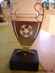 Fussball Pokal