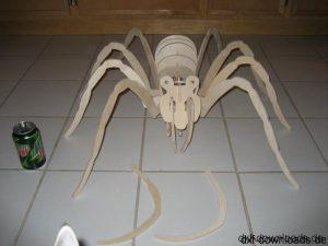 Spinne 3D
