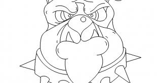 Bulldoge Kopf