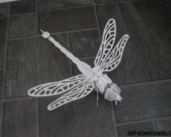 Drachenfliege1