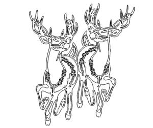 2 Hirsche - 2 deer