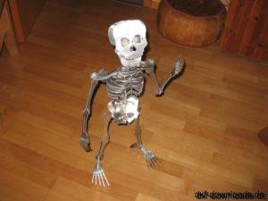 Skelett 3D Modell -  Skeleton 3D Model