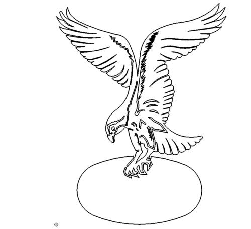 Adler - Eagle