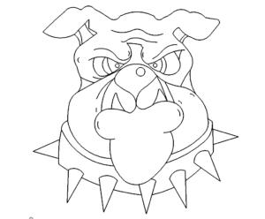 Bulldoge Kopf - Bulldog Head