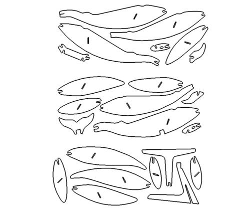 Blauwal 3D Modell - Blue Whale 3D Model