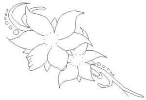 Blume - Flower