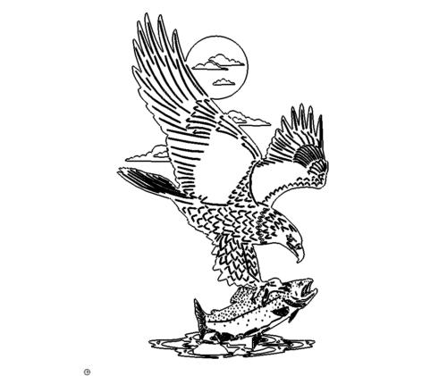Adler fischt