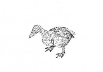 Ente 3D Zeichnungen - Duck 3D drawings