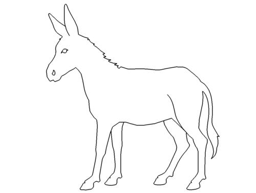 Esel - donkey