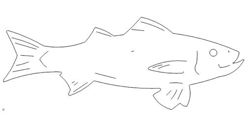 Fisch - Fish