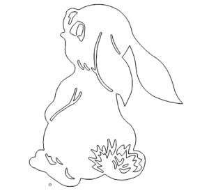 Süßer Hase - Sweet Rabbit