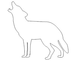 Heulender Wolf - Howling