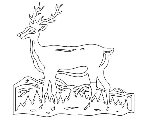 Hirsch im Feld - Deer in the field
