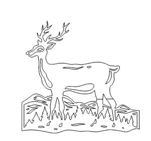 Hirsch im Feld