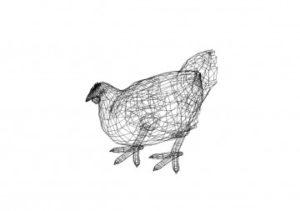 Huhn 3D Zeichnung - Chicken 3D drawing