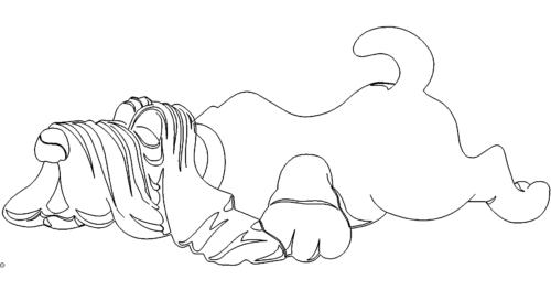 Hund schläft - dog sleeps