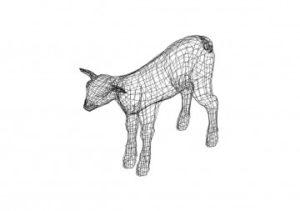 Kalb 3D Zeichnung - Kalb 3D drawing