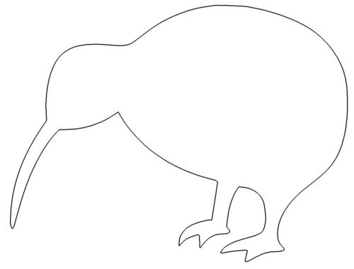 Kiwi Wahrzeichen Neuseeland