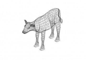 Kuh 3D Zeichnung - Cow 3D drawing
