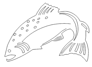 Lachs - Salmon