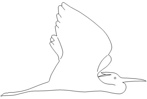 Fischreiher - Herons