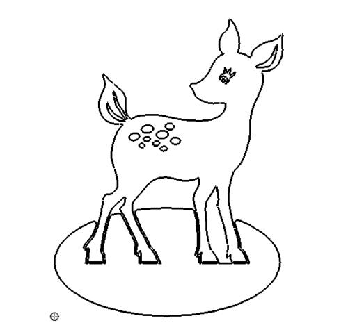 Reh - deer