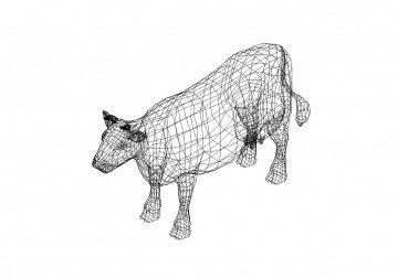 Rind 3D Zeichnung - Rind 3D drawing