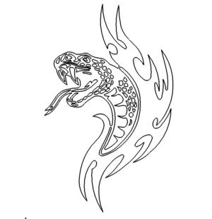 gefährliche Schlange - dangerous snake