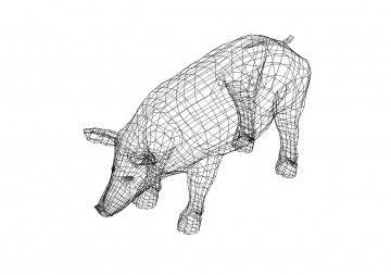 Schwein 3D Zeichnung - Pig 3D drawing
