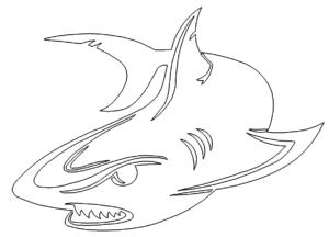 Angriffslustiger Hai - Funny shark attack