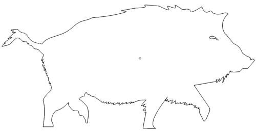 Wildschwein Sauer
