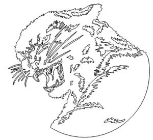Verärgerter Panther - Angry Panther