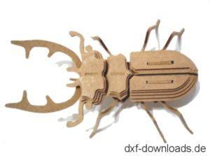 Blatthornkaefer 3D Modell - Scarab Beetle 3D model