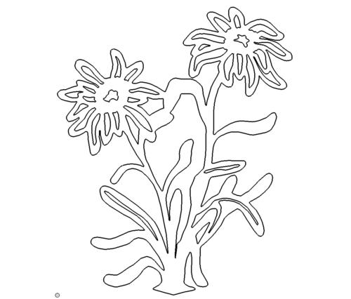 Blumen - Flower