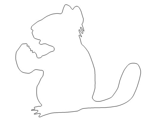 Eichhörnchen - Chipmunk