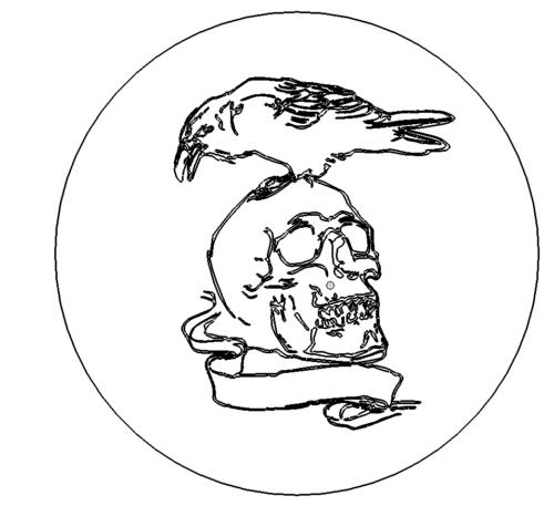 Krähe auf Totenkopf
