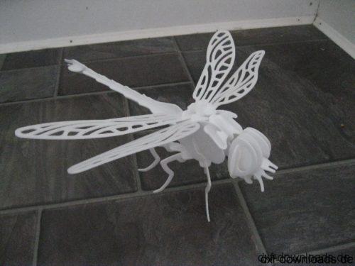 Drachenfliege 3D Modell - Kite fly 3D model