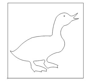 Ente - Duck