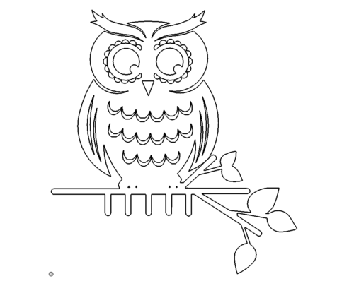 Eule auf Ast - Owl
