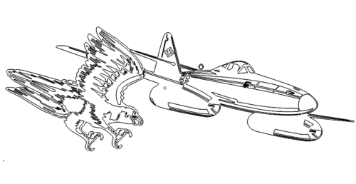 Falke gegen Flugzeug
