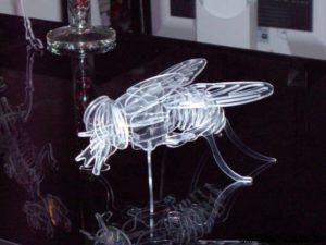 Fliege 3D Modell