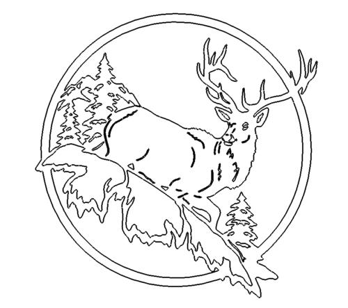Hirsch - Deer