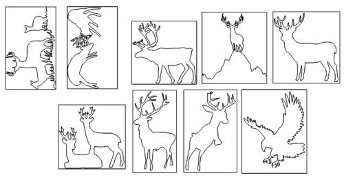 Verschiedene Hirsche und ein Adler - Several deer and an eagle
