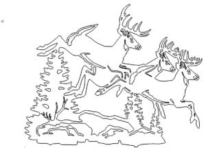 Hirschrudel - Deers