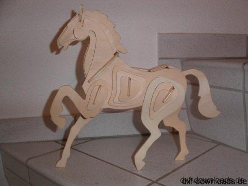 Pferd 3D Modell - Horse 3D Model