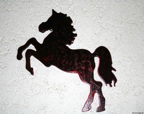 Pferd - Horse