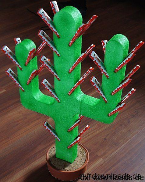 Kaktus - cactus
